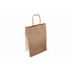 Paper Carry Bag with a Twist Handle #160