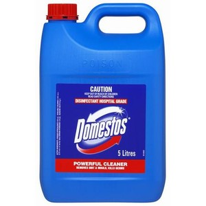 Domestos Regular 5L